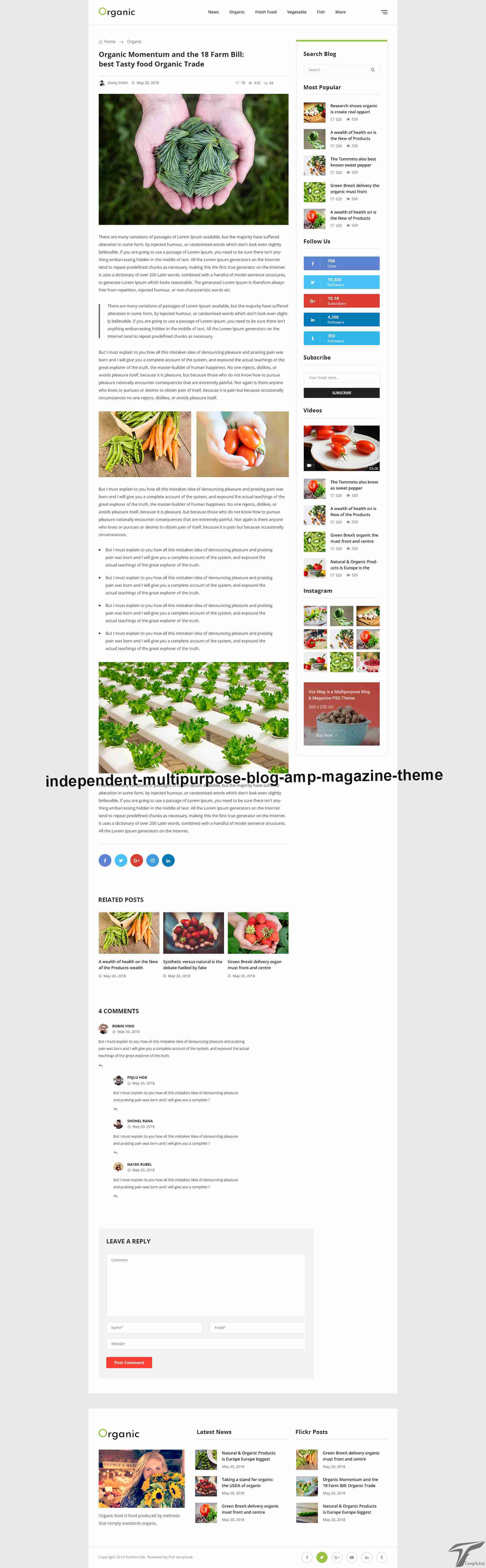 https://images.besthemes.com/images/h1_independent-multipurpose-blog-amp-magazine-theme51-_-249989416/Theme-s20s-Preview/50-Details.jpg