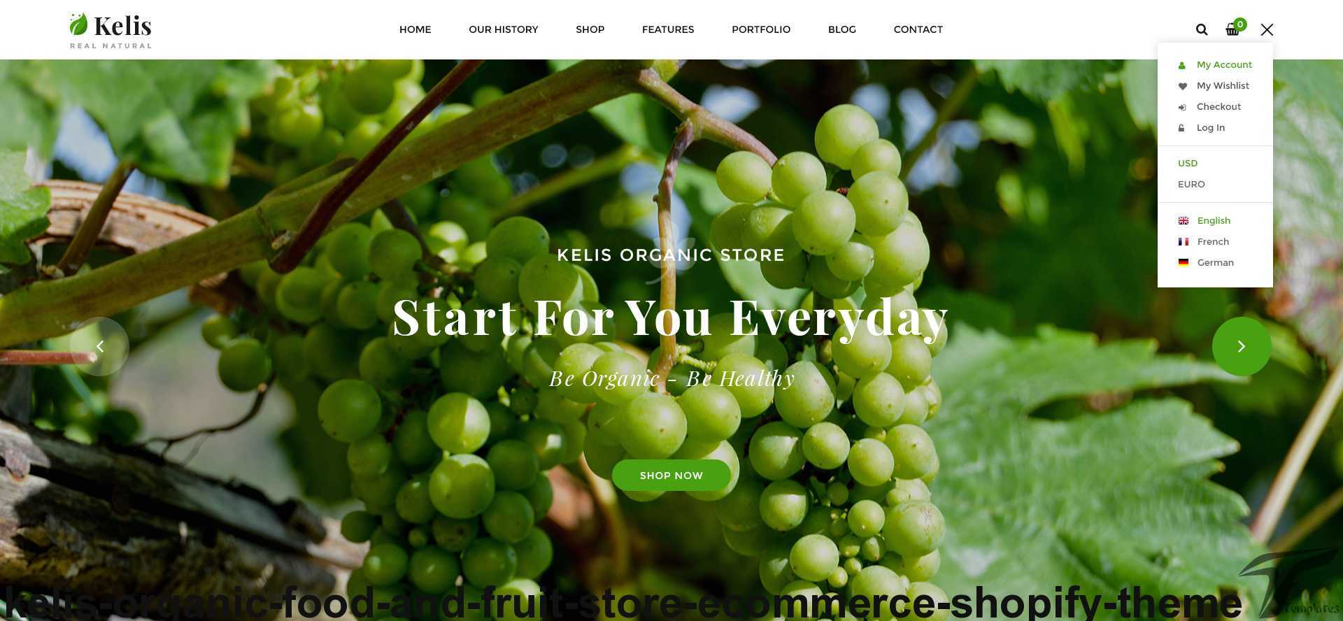 https://images.besthemes.com/images/h1_kelis-organic-food-and-fruit-store-ecommerce-shopify-theme17-_-234864139/Theme-s20s-Preview/16_Account.jpg