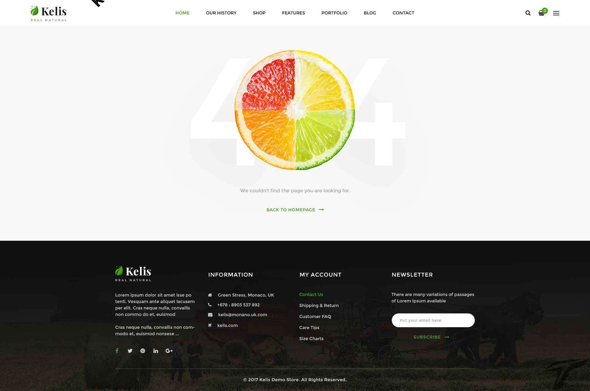 https://images.besthemes.com/images/h1_kelis-organic-food-and-fruit-store-ecommerce-shopify-theme18-_-234864139/Theme-s20s-Preview/17_404.jpg