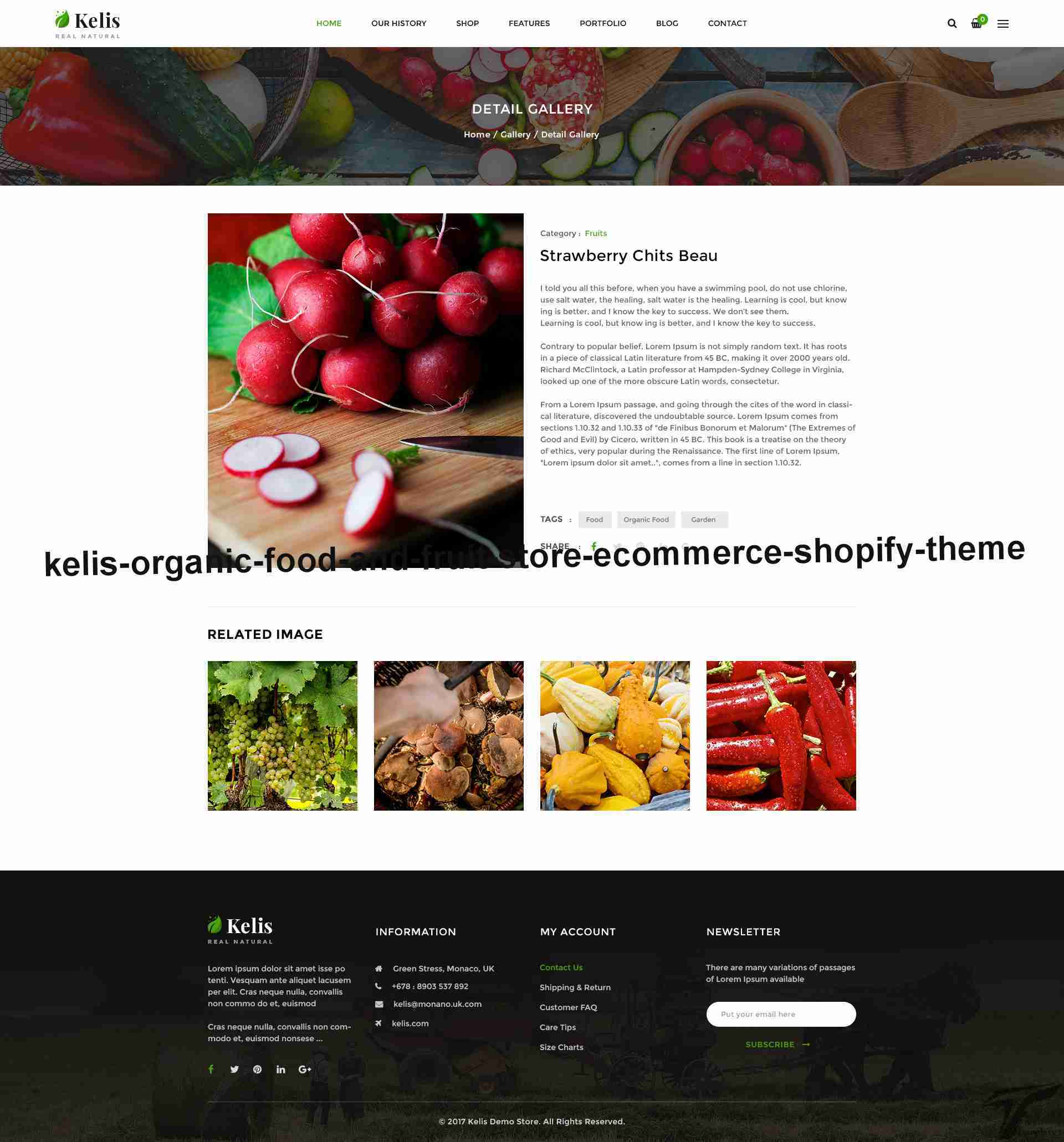 https://images.besthemes.com/images/h1_kelis-organic-food-and-fruit-store-ecommerce-shopify-theme20-_-234864139/Theme-s20s-Preview/19.Gallery_Detail.jpg