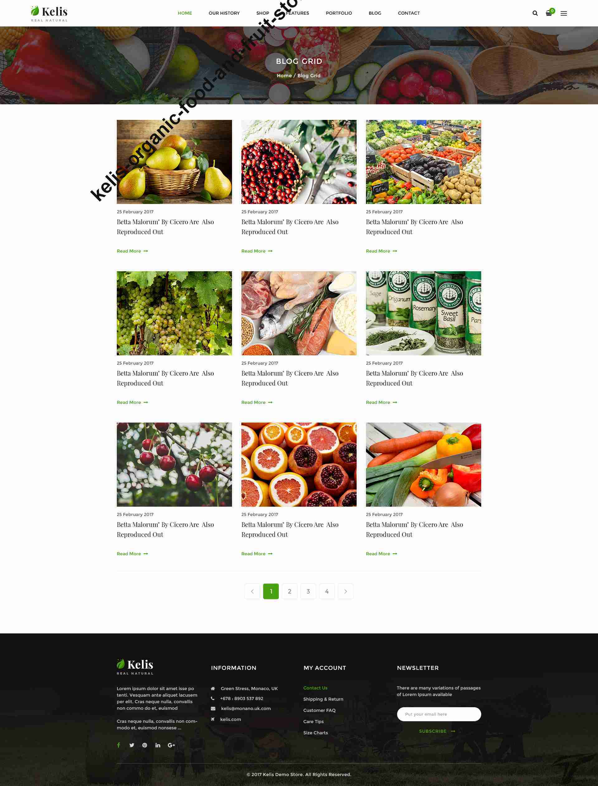 https://images.besthemes.com/images/h1_kelis-organic-food-and-fruit-store-ecommerce-shopify-theme9-_-234864139/Theme-s20s-Preview/08_Blog_Grid.jpg