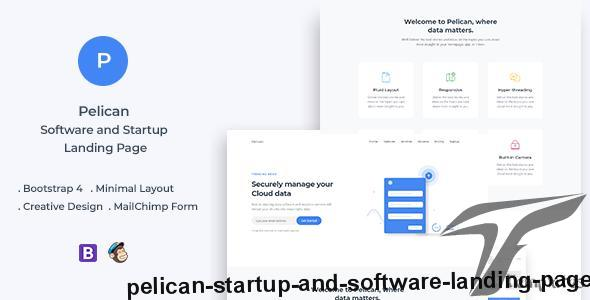 Pelican Startup and Software Landing Page by ydirectionthemes