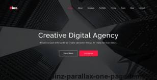 Binz - Parallax One Page Template By isathemes