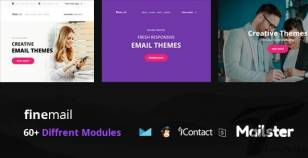 finemail - 60+ Modules + Online Access + Mailster + MailChimp By williamdavidoff