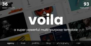 Voila - A Powerful Multi-Purpose Portfolio Template By truethemes