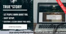 True Story - Multi-Purpose Personal WordPress Blog Theme